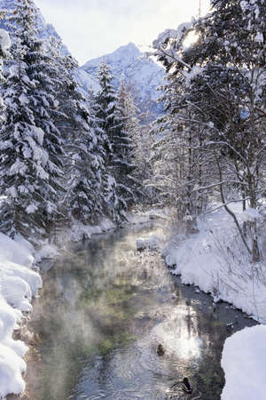 Winter mountain landscape with river or stream. Trees covered with snow and hoarfrost, ducks on water, reflection of the sun in the water. Sunny winter day. Reklamní fotografie