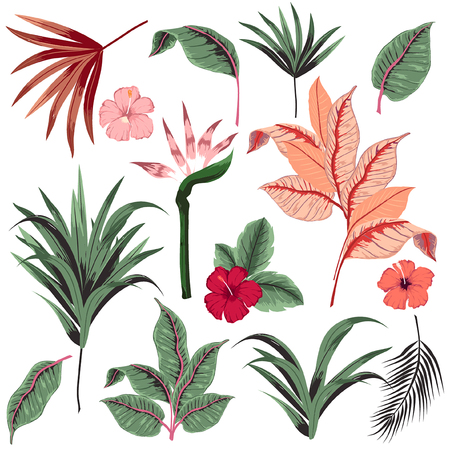 Set of  vector  beautiful artistic bright tropical with exotic forest. Colorful original stylish floral background print, bright rainbow colors on white. Vectores