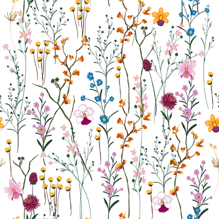 Summer Vector many kind of wild flowers seamless beautiful on white color background, pattern for fashion and all prints on hand drawing style.