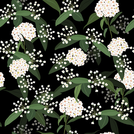 White Hydenyear in the  dark garden night pattern seamless flowers Pattern Isolated on black color. Botanical Floral Decoration Texture. Hand drawing Design for Fabric Print, Wallpaper Background.