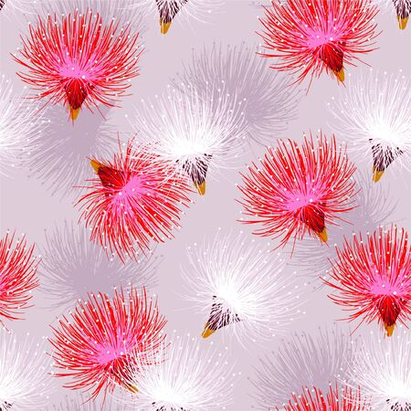 Soft and gentle mood of Blooming  sweet Red  and white Powder Puff flowers blowing in the wind with random repeat  design for fashion,fabric,wallpaper,web,and all prints on light pink background color