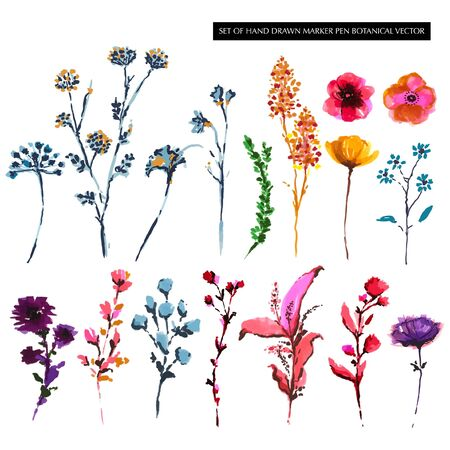 Set of Colorful hand drawn botanical flower from marker pen sketch in vector EPS 10 Stylish elements.