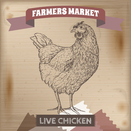 farmer: Vintage farmers market label with live chicken. Placed on wooden texture. Includes hand drawn elements. Illustration