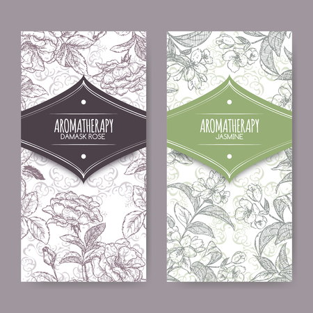 aromatherapy oil: labels with Damask rose and jasmine sketch on elegant lace background. Aromatherapy series. Great for traditional medicine, perfume design, cooking or gardening labels.
