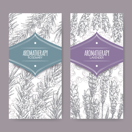labels with lavender and rosemary on elegant lace background. Aromatherapy series. Great for traditional medicine, perfume design, cooking or gardening labels.