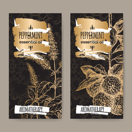 perfume oil: Set of two labels with Mentha piperita aka Peppermint and Citrus bergamia aka bergamot sketch on black and golden background. Aromatherapy series. Illustration