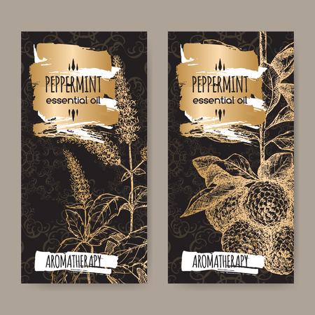 Set van twee labels met Mentha piperita aka Pepermunt en Citrus bergamia aka bergamot schets op zwarte en gouden achtergrond. Aromatherapie serie.