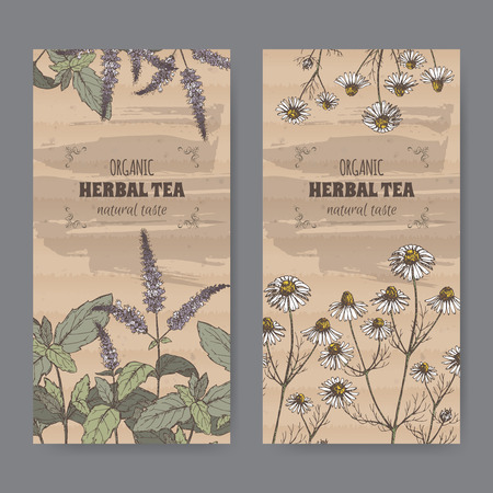 chamomile tea: Set of two color vintage labels for peppermint and chamomile herbal tea. Placed on cardboard texture.
