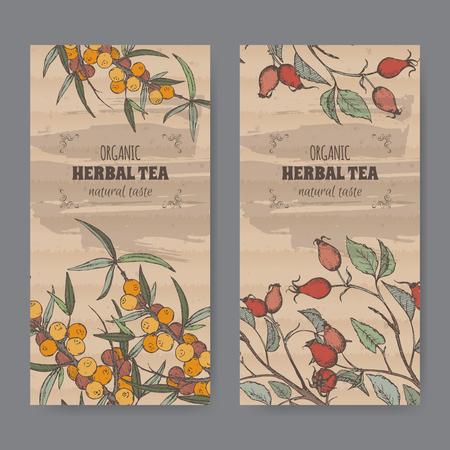 dog rose: Set of two color vintage labels for dog rose and sea buckthorn herbal tea. Placed on cardboard texture.
