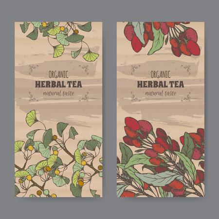 medicina tradicional china: Conjunto de dos etiquetas de color de la vendimia para el gingko y bayas goji té de hierbas. Colocado en la textura de cartón. Vectores