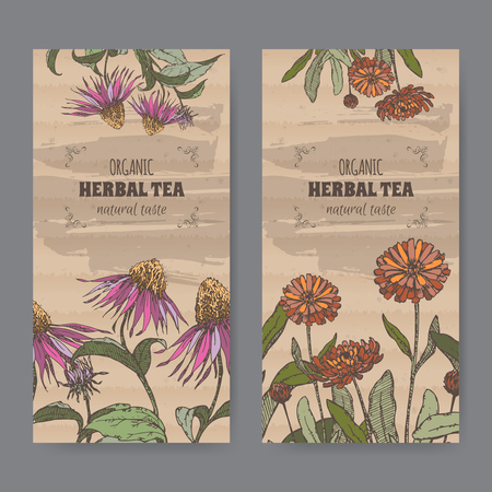 calendula: Set of two color vintage labels for calendula and echinacea herbal tea. Placed on cardboard texture. Illustration