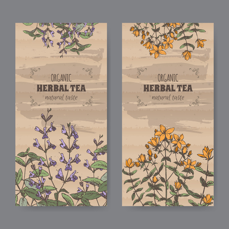 john: Set of two color vintage labels for sage and Saint John wort herbal tea. Placed on cardboard texture. Illustration