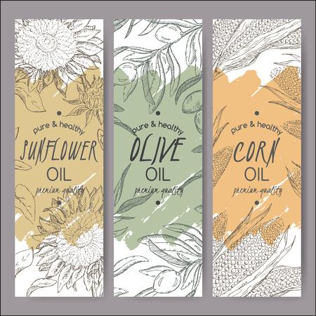 Set de 3 vecteur de tournesol, d'olive, de maïs modèles d'étiquettes d'huile. Sur la base avait dessiné le croquis. Idéal pour l'emballage et la conception de la publicité.