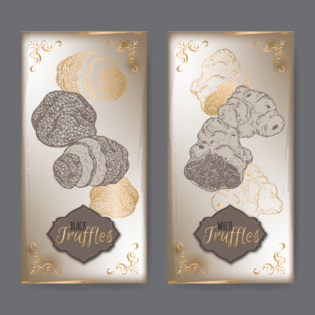 truffle: Set of two vintage labels with white and black truffles placed on old paper background. Great for restaurant, cafe, markets, grocery stores, organic shops, food label design. Illustration