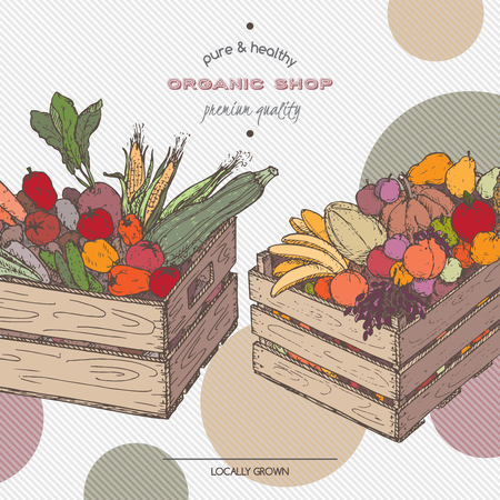 crates: Color organic shop template with fruits and vegetables in wooden crates. Based on hand drawn sketch.