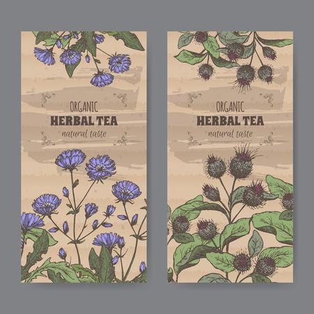Set van twee kleuren vintage labels voor klit en cichorei kruidenthee. Geplaatst op karton textuur.