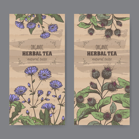 cardboard texture: Set of two color vintage labels for burdock and chicory herbal tea. Placed on cardboard texture.