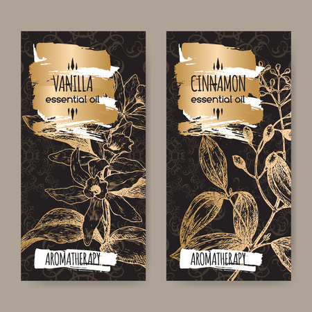 cinnamomum: Set of two labels with Vanilla planifolia aka Vanilla and Cinnamomum verum aka cinnamon sketch on elegant black lace background. Aromatherapy series.