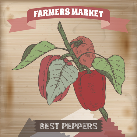 farmer market: Farmer market label with fresh peppers on a branch color sketch. Placed on original wooden texture. Includes hand drawn elements.
