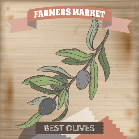 blanch: Farmer market label with fresh olive branch color sketch. Placed on original wooden texture. Includes hand drawn elements.