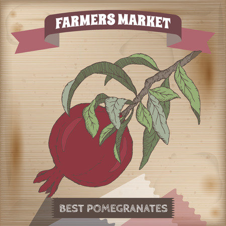 farmer market: Farmer market label with fresh pomegranate color sketch. Placed on original wooden texture. Includes hand drawn elements. Illustration