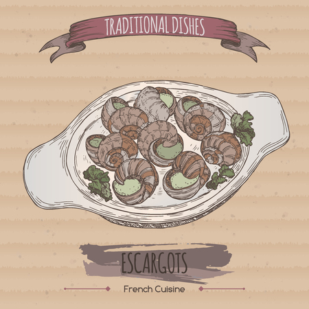 french cuisine: Color escargots dish sketch placed on cardboard background. French cuisine. Traditional dishes series. Great for restaurant, cafe, menu, recipe books, food label design.