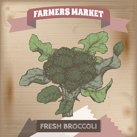 market gardening: Fresh broccoli in garden hand drawn color vector sketch on wooden background. Farmers market collection. Great for cooking, gardening, farming or agricultural design.