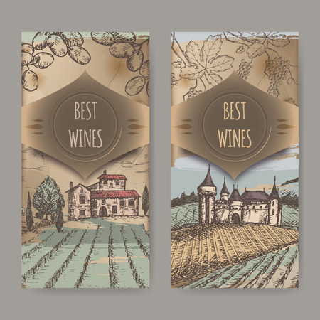 biological vineyard: Set of two vintage wine label templates with vineyard and castle color sketch. Placed on old paper background texture. Great for wineries, grocery stores, wine label design.