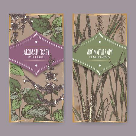 Set van twee kleuren labels met citroengras en patchoeli op vintage achtergrond. Aromatherapie serie. Zeer geschikt voor de traditionele geneeskunde, parfum ontwerp, koken of tuinieren labels.