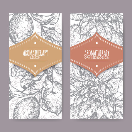 limon: Set of two labels with Orange blossom and lemon branch sketch on elegant lace background. Aromatherapy series. Great for traditional medicine, perfume design, cooking or gardening. Illustration