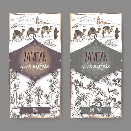 religion  herb: Two Zaatar spice mixture labels with camel train and desert landscape, thyme and oregano sketch. Culinary herbs collection. Great for cooking, medical, gardening design. Illustration