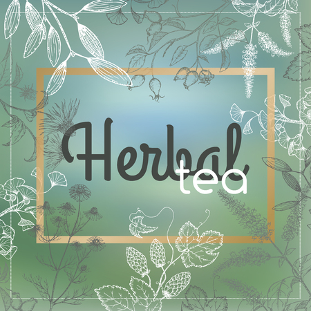 humulus: Organic tea label decorated with hand drawn herbs blurred background. Great for tea label design, traditional medicine, or gardening.