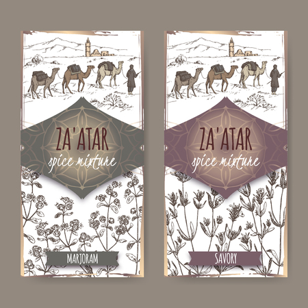 marjoram: Two Zaatar spice mixture labels with desert landscape, marjoram and savory sketch. Culinary herbs collection. Great for cooking, medical, gardening design. Illustration