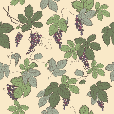 grapevine: Color grapevine seamless pattern based on hand drawn sketch. Great for wineries, grocery stores, aromatherapy, wine label design.