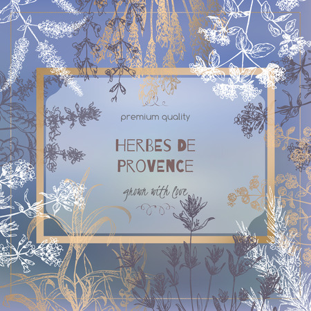 Herbes de Provence template on blurred background with botanical hand drawn sketches. Culinary herbs collection. Great for cooking, medical, gardening design. Illustration