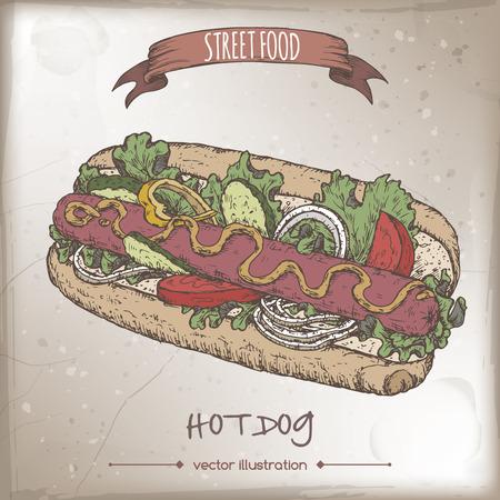 american cuisine: Color hot dog sketch on grunge background. American cuisine. Street food series. Great for market, restaurant, cafe, food label design.
