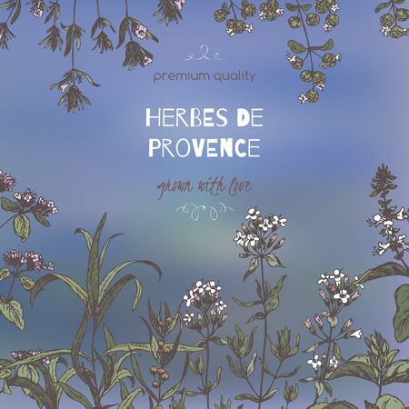 Herbes de Provence template on blurred background with color botanical hand drawn sketches. Culinary herbs collection. Great for cooking, medical, gardening design.