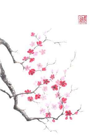 Japanse stijl sumi-e roze pruimenbloesem inkt schilderij. Stockfoto