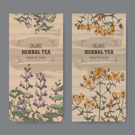 officinalis: Two color vintage labels for sage and Saint John wort. Illustration