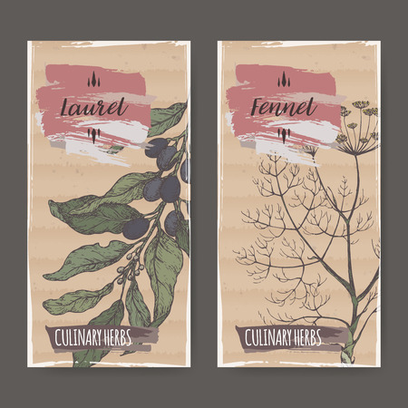 Two color labels with laurel and fennel sketch.