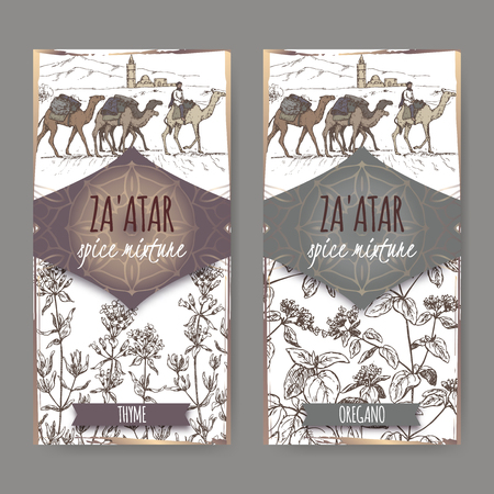 Two Zaatar spice mixture labels with camel train and desert landscape, thyme and oregano sketch. Culinary herbs collection. Great for cooking, medical, gardening design. Illustration