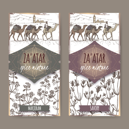 Two Zaatar spice labels with desert , marjoram and savory sketch.