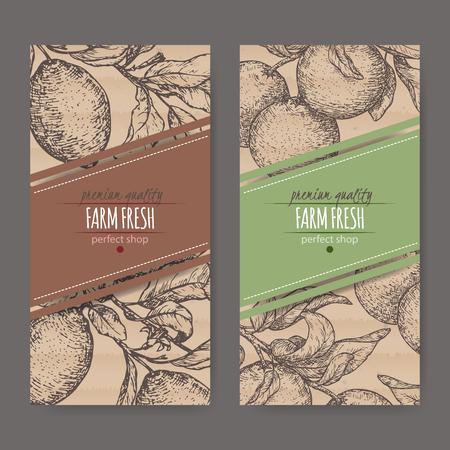 Set of two labels with fresh lemon and lime fruits on cardboard texture. Ilustração