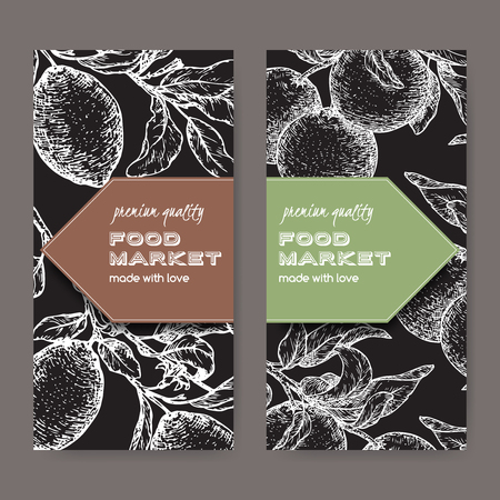 Set of two labels with fresh lemon and lime fruits on black.