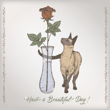vintage postcard: Romantic color intage birthday card template with calligraphy, cat and rose in vase sketch.