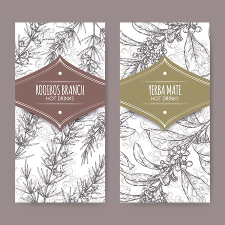 Set of two labels with Rooibos aka Aspalathus linearis and Yerba mate aka Ilex paraguariensis branches.