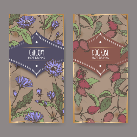 Two color labels with Cichorium intybus aka common chicory and Rosa canina aka dog rose sketches.