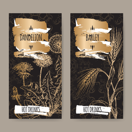 Two labels with Dandelion aka Taraxacum officinale and Barley aka Hordeum vulgare on black. Hot drinks collection. 스톡 콘텐츠