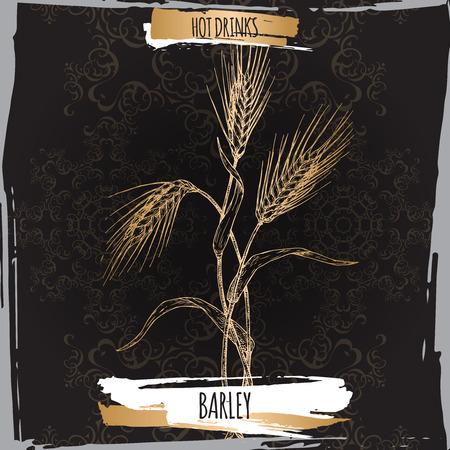 Barley aka Hordeum vulgare sketch on black. Hot drinks collection..