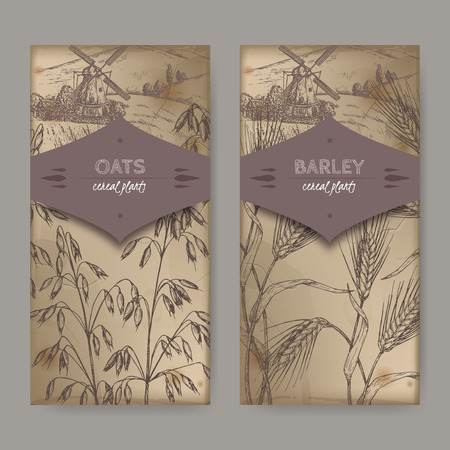 Set of two labels with Barley aka Hordeum vulgare, oats aka Avena sativa and field landscape sketch. Cereal plants collection. Great for bakery, agriculture, farming design. Illustration
